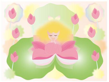 Romantic Lotus