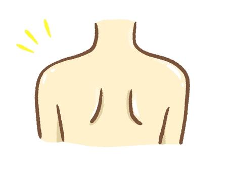 Shoulder bone