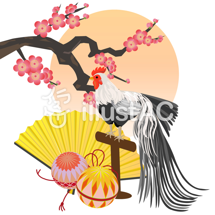 尾長鶏と梅 酉年年賀状のイラスト