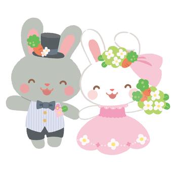 결혼식 토끼 4