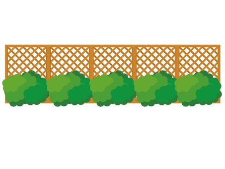 Hedge _ Fence