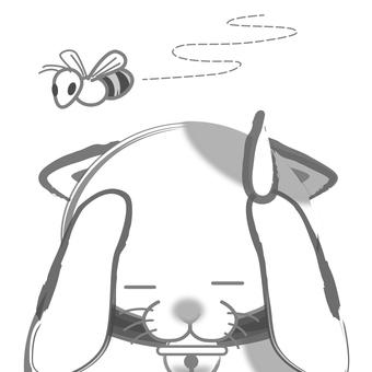 Sumi cats - bee