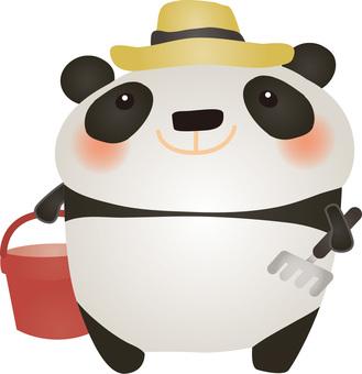 Panda cliff hunt