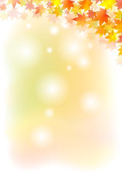 가을 200