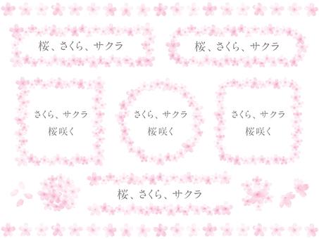 Sakura -15