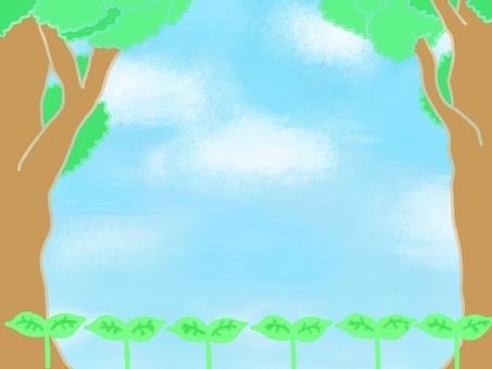 나무와 새싹 푸른 하늘