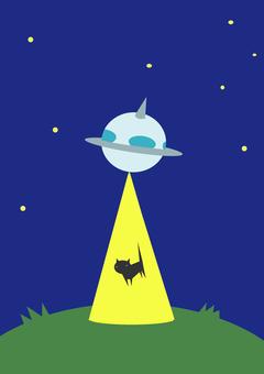 UFO에 납치되는 고양이