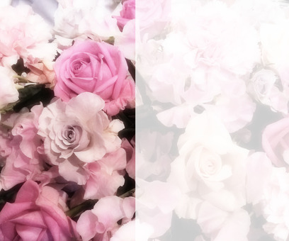 Flower message card 3-C