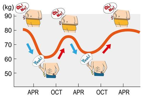 다이어트의 그래프 (성공과 리바운드)