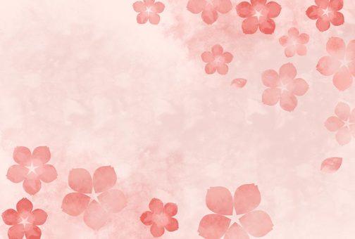수채화 벚꽃