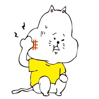 虫歯になった猫