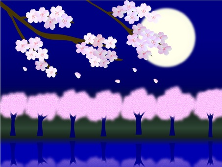 Flower of Yoshino cherry tree in March