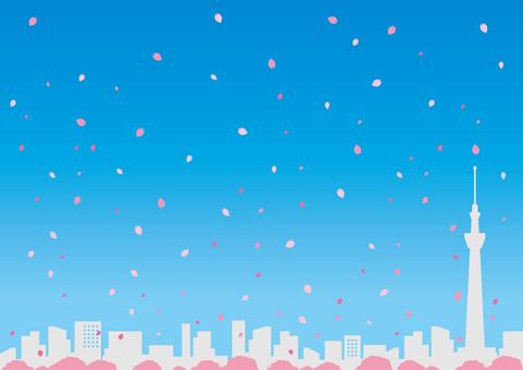 Townscape (Sakura)