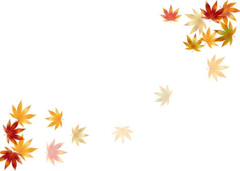 Autumn leaves 223