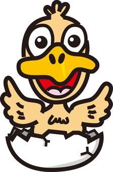 Egg duck chicken