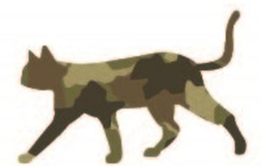 Camouflage cat khaki