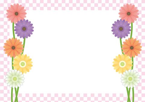 Gerbera's frame (pink)