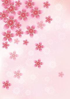 벚꽃의 꽃 48