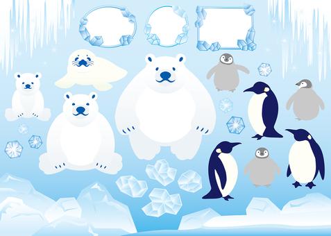 Arctic image material set