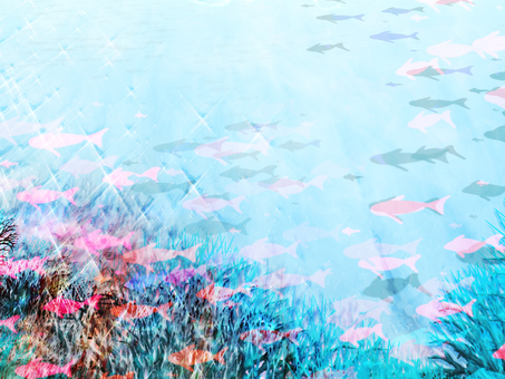 Glittering fish school coral sea