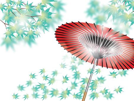 Maple _ and umbrella 5