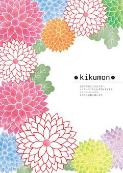 Kikumon