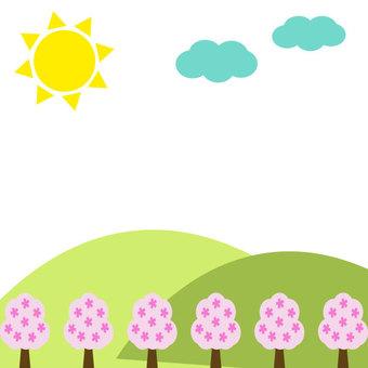 Sakura and the sun