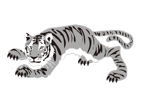 Animals _ Tiger 8 _ monochrome