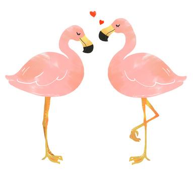 Flamingo's couple