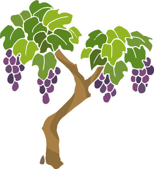 Thurs (grapes and borders)