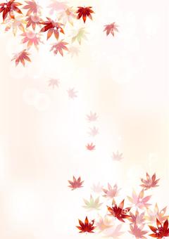 Fall pattern Maple 8