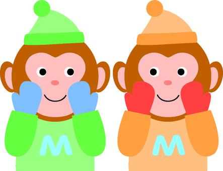 A monkey in a winter