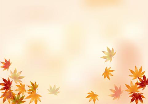 Autumn leaves 214