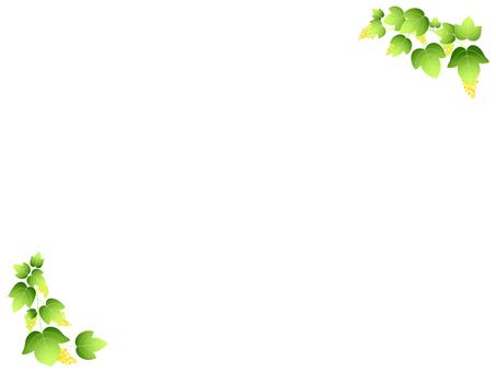 Ivy's frame 3