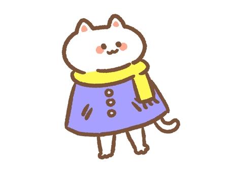Cat in coat