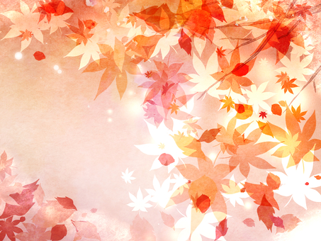Snow and autumn leaves 2