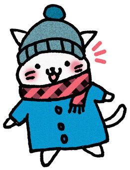 Coat cat