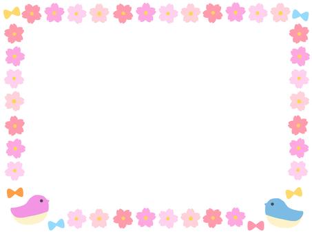 框架春天的花朵