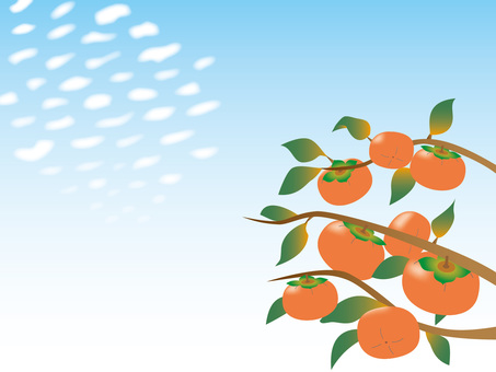 Scaly clouds and persimmon - 01