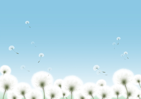 Dandelion fluff illustration
