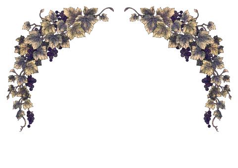 Grape illustration frame 05-3 (black line)