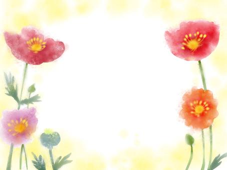 Hinagishi's flower (poppy)