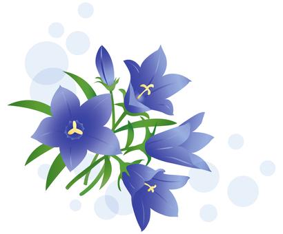 Rind flowers