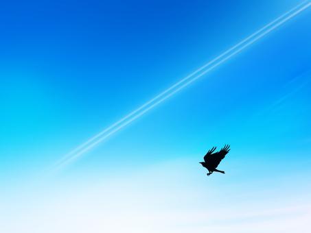 Aerial cloud