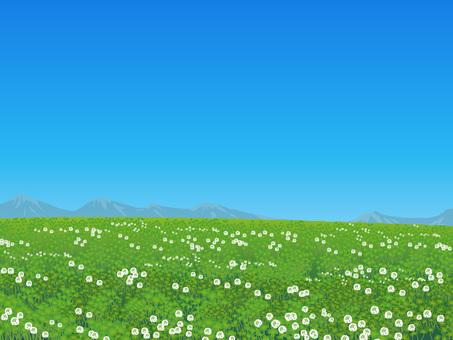 Clover's landscape 01