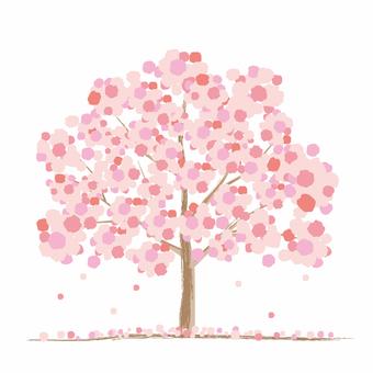 Cherry tree image