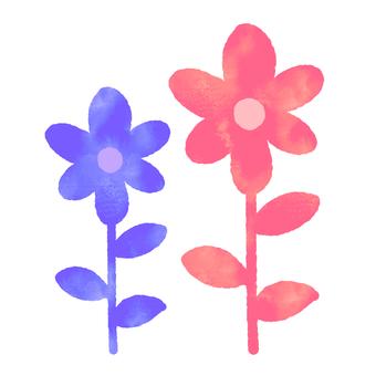 Blooming flower (two _ watercolors)