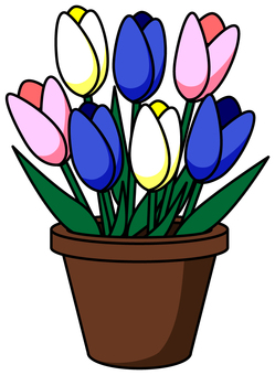 Potted tulip _ 03