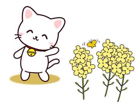 ねこさん(菜の花)