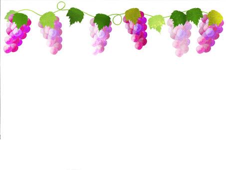 Grape frame 2